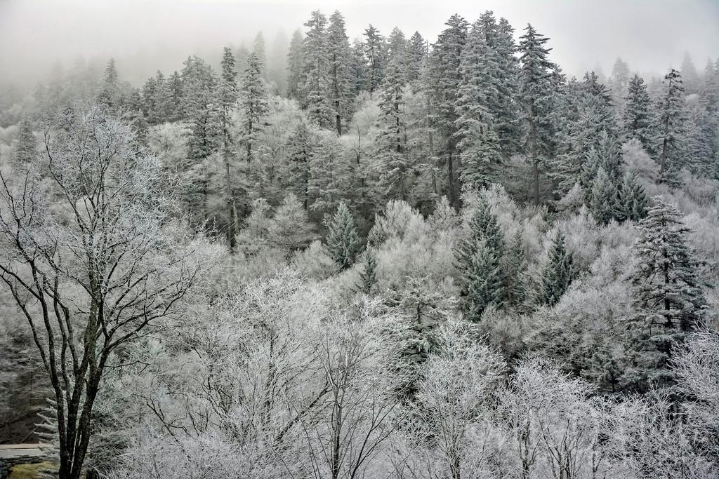 A Frosty Gap