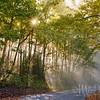 Morning Sun Streams