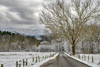 December On The Loop Road