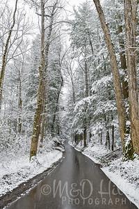 Winter Travels