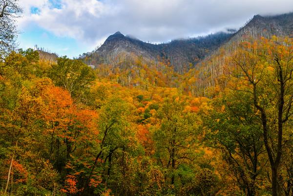 Fall Peaks At Chimney Tops