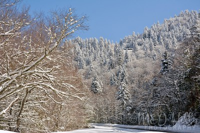 Season Of White