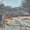 Frosty Fenceline