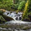 Roaring Waters At Roaring Fork
