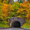 Fall Tunnel On Newfound Gap