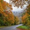 Newfound Autumn