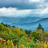 Blue Ridge Mountain Bouquet