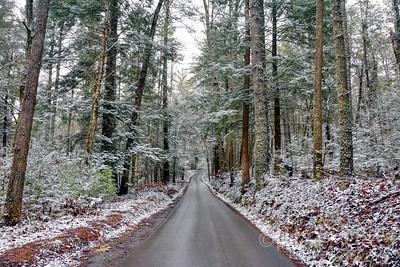 Winter On The Loop Road