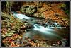Maine_Fall2