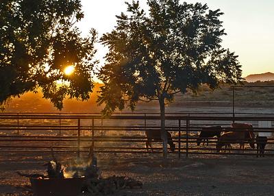 DSC_4935-7x5-Sunset