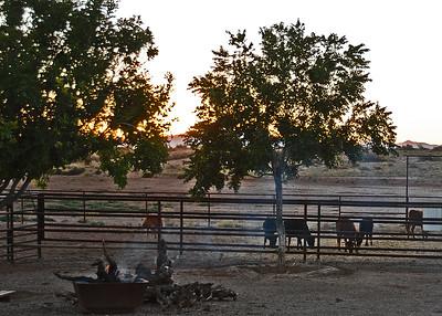DSC_4964-7x5-Sunset