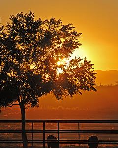 DSC_4928-8x10-Sunset