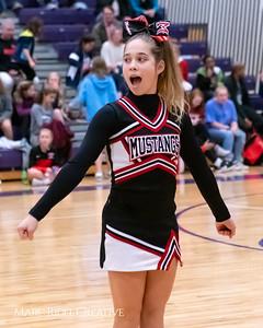 Daniels vs Martin girls basketball. MRC_7926