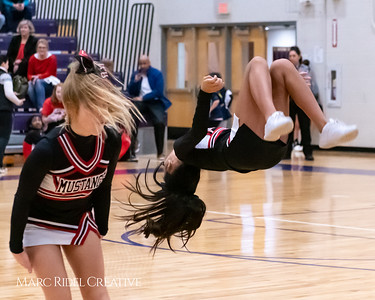 Daniels vs Martin girls basketball. MRC_7929