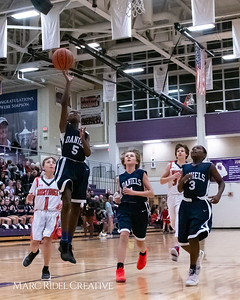 Daniels vs Martin girls basketball. MRC_7820
