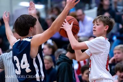 Daniels vs Martin girls basketball. 750_7135