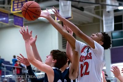 Daniels vs Martin girls basketball. 750_7113
