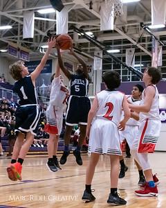 Daniels vs Martin girls basketball. MRC_7826