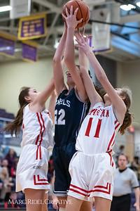 Daniels vs Martin girls basketball. 750_6531