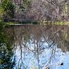 McKinney Falls State Park Texas