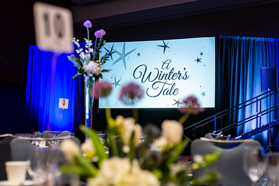 A Winter's Tale. Methodist Home Fundraiser. February 1, 2020. D4S_8141