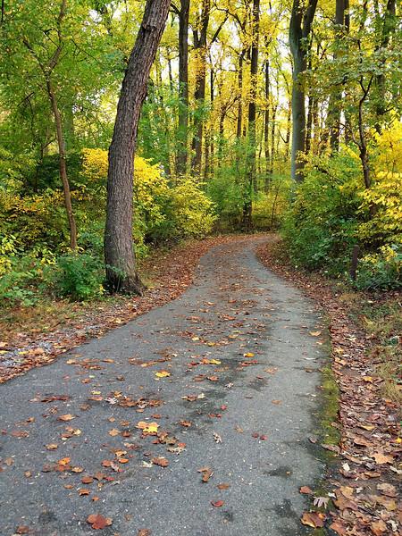 "Sligo Creek hiker-biker trail <I><span class=""nonNative"">(iPhone photo)</span></I> Silver Spring, MD"