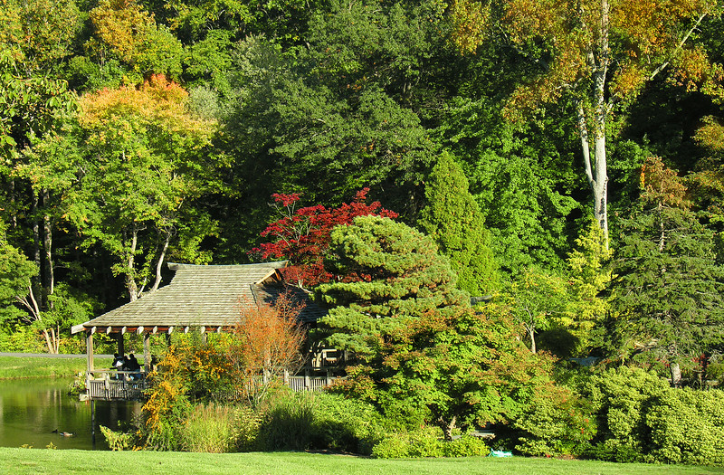 Autumn in the Gude Japanese Garden<br /> Brookside Gardens, Wheaton, MD