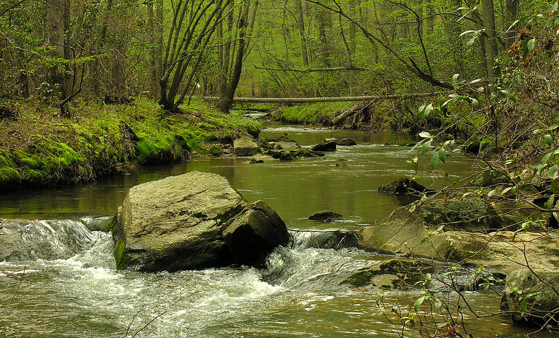 Hawlings River in springtime<br /> Rachel Carson Conservation Park, Brookeville, MD