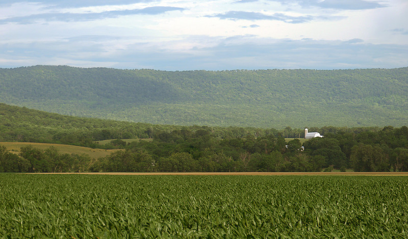 Farmland in Shenandoah Valley along Old Valley Pike<br /> Near Mount Jackson, VA