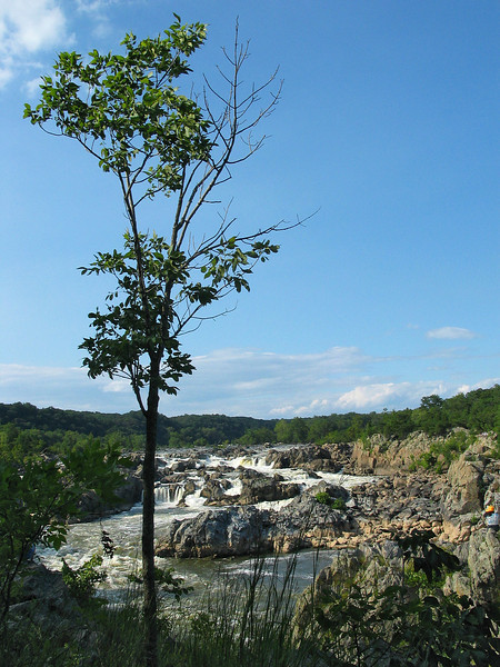 From bluff above the falls<br /> Great Falls National Park, McLean, VA
