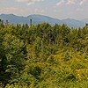 We visited the White Mountains area 6th to the 9th of August 2021. These photos were taken along the Kancamagus Highway in New Hampshire. This photo was taken at scenic areas along the Kancamagus Highway.