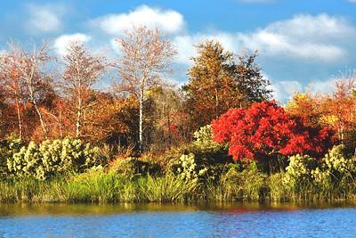 NJ Mill Creek Autumn