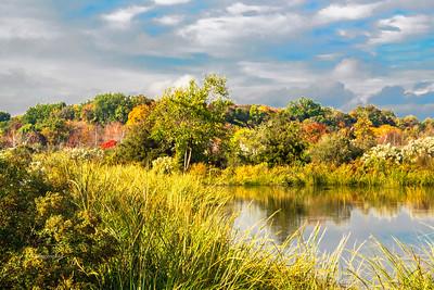 Mill Creek Marsh Fall Foliage