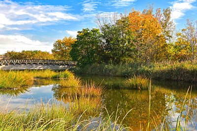 Mill Creek Fall Landscape