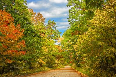 NJ Autumn Palisades