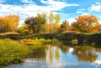 Mill Creek Marsh Autumn Afternoon
