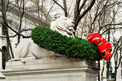 New York Public Library Lion Fortitude Christmas 2013