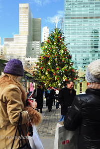Bryant Park Christmas Tree 2013