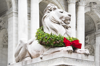 NY Public Library Lion Patience at Christmas