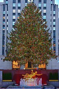Dec 14_NYC Tree and Prometheus
