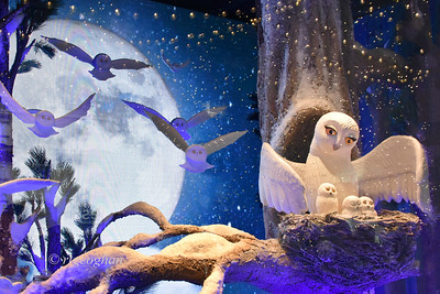NYC Holiday Windows Lord and Taylor Owls