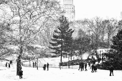 Central Park Snow Landscape