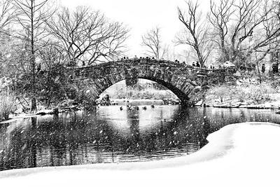 Central Park Pnnd Snowscape