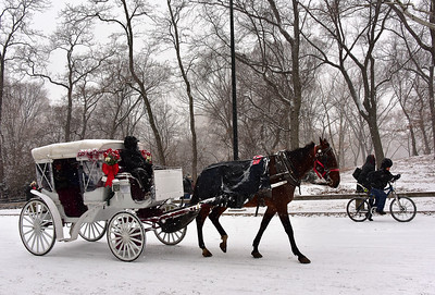 Central Park Winter Carriage Ride