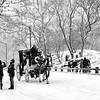 Central Park SNowy Day Carriage Ride