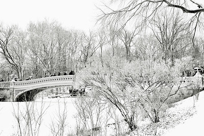 Winter White-Central Park Bow Bridge