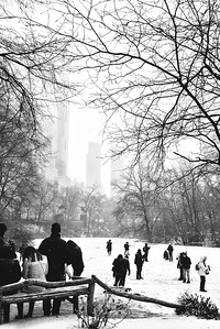 On Thin Ice-Central Park