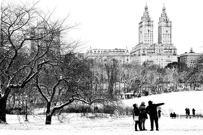 Central Park Winter Lake View