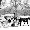 Winter Wonderland Central Park