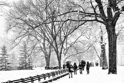Central Park West Side Stroll in the Snow